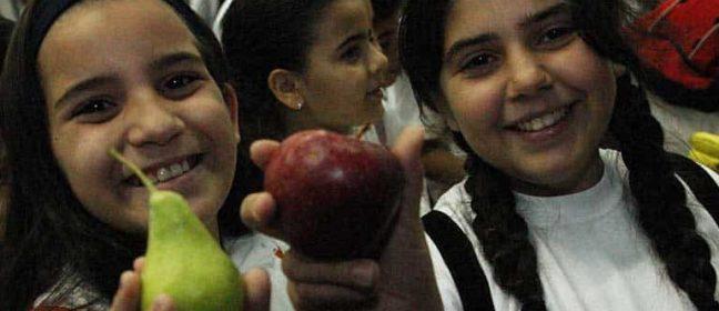 Пресни плодове и мляко за децата в училище